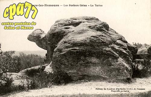 St Pierre Lès Nemours - Les Rochers Gréau - La Tortue