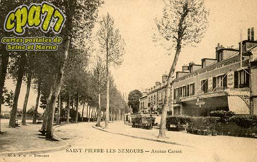 St Pierre Lès Nemours - Avenue Carnot