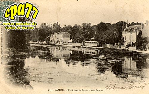 Samois Sur Seine - Petit bras de Seine - Vue Amont