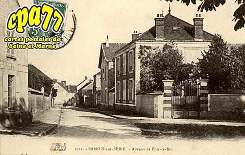 Samois Sur Seine - Avenue de Bois-le-Roi