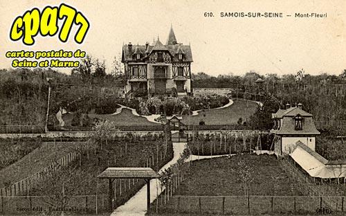 Samois Sur Seine - Mont-Fleuri