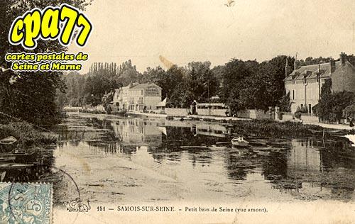 Samois Sur Seine - Petit bras de Seine (vue amont) (en l'état)