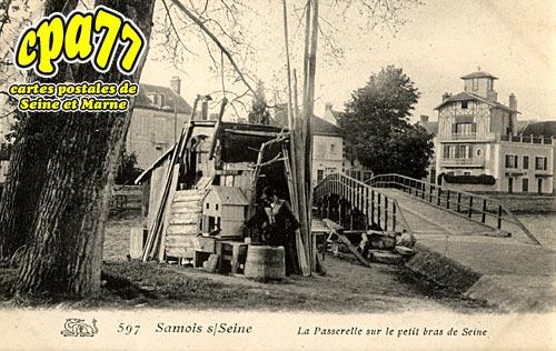 Samois Sur Seine - La Passerelle sur le petit bras de Seine