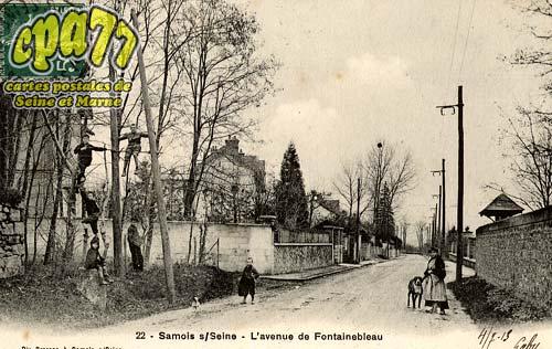 Samois Sur Seine - L'Avenue de Fontainebleau