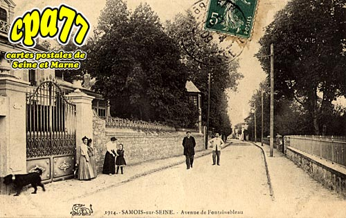 Samois Sur Seine - Avenue de Fontainebleau