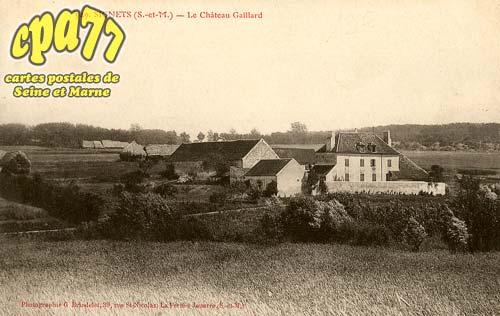 Signy Signets - Le Château Gaillard