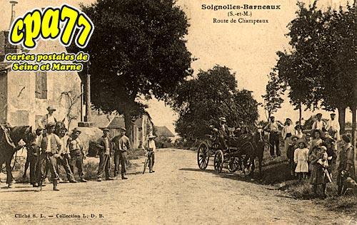 Soignolles En Brie - Route de Champeaux