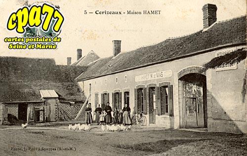 Souppes Sur Loing - Cerizeaux - Maison Hamet