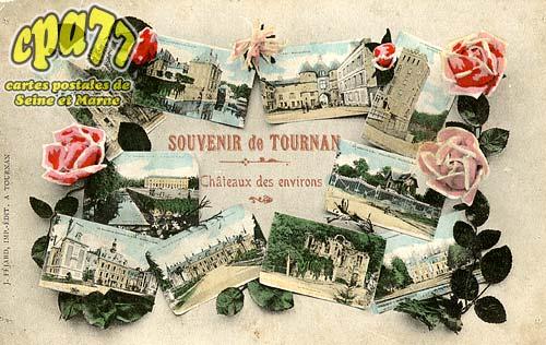 Tournan En Brie - Souvenir de Tournan - Châteaux des environs