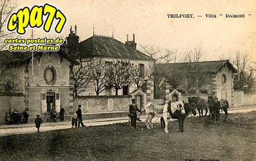 Trilport - Villa