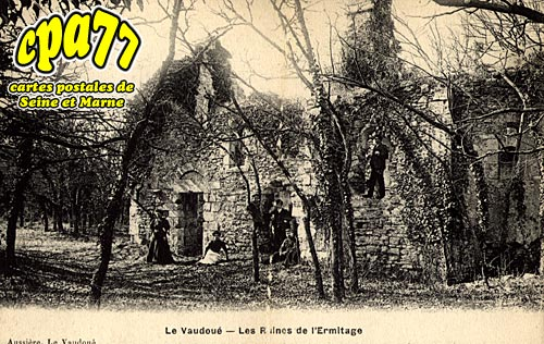 Le Vaudoué - Les Ruines de l'Ermitage