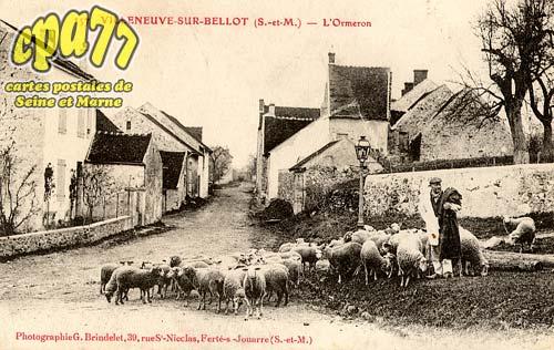 Villeneuve Sur Bellot - L'Ormeron