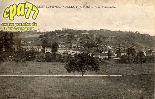 Villeneuve Sur Bellot - Vue d'ensemble