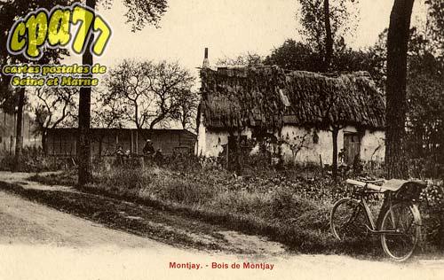 Villevaudé - Bois de Montjay